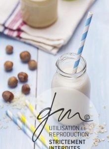 Photo produits culinaires Lait végétal maison - Delphine Guichard - Photographe culinaire